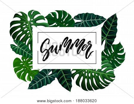 Summer brush lettering. Vocation cards, banners, posters design. Green palm tropical leaves frame background. Handwritten modern brush pen calligraphy. Vector illustration stock vector.