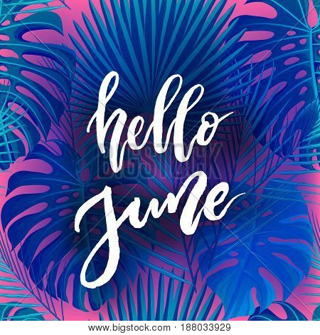 Hello June brush lettering. Vocation cards, banners, posters design. Blue pink palm tropical leaves background. Handwritten modern brush pen calligraphy. Vector illustration stock vector.