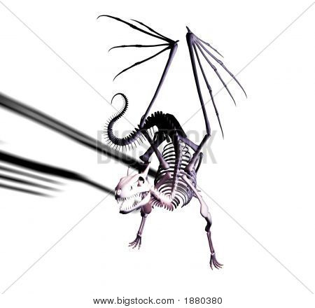 Undead dragon skeleton crouched and ready to lunge. poster