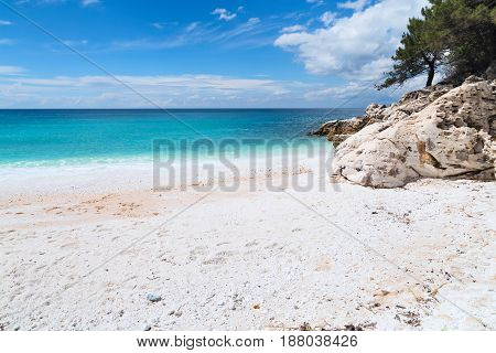 Panorama seascape with greek Marble Beach in Thassos Island, Greece with turquoise water and pine trees