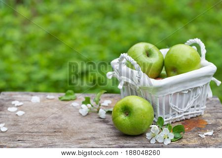 Fresh sweet juicy green apples with flowers on a wooden background in garden