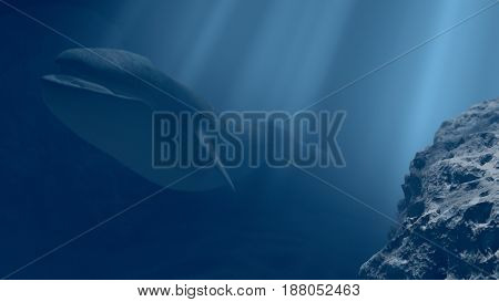 Blue whale under the sea, 3d illustration