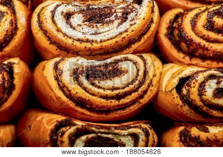 Buns with poppy seeds. Russian national food