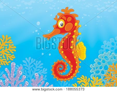 Illustration of a red seahorse and corals on a tropical reef