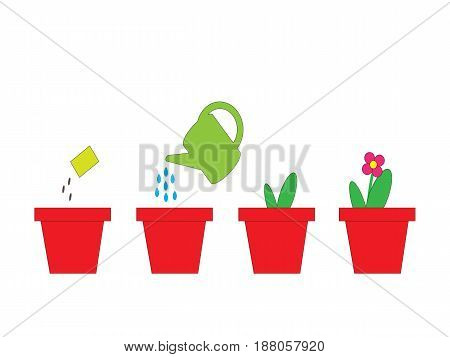 Cultivation of a plant in a pot. Sequence. A vector picture on the white isolated background.