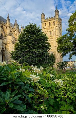 The cathedral in Exeter. The North Tower. A lot of greenery in the foreground. Morning. Devon. England
