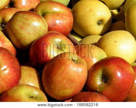 Apples on bazaar in Tel Aviv Israel December 23 2010
