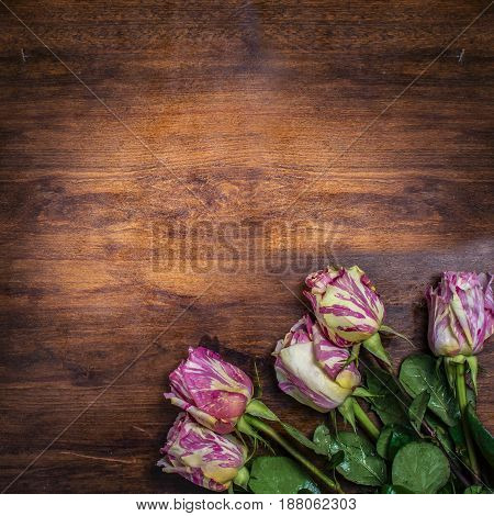 A bouquet of striped roses on the corner of an old dark wooden table. View from above.