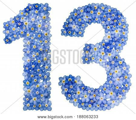 Arabic Numeral 13, Thirteen, From Blue Forget-me-not Flowers