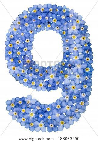 Arabic Numeral 9, Nine, From Blue Forget-me-not Flowers