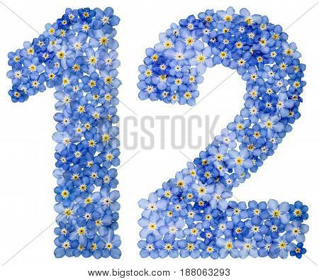 Arabic Numeral 12, Twelve, From Blue Forget-me-not Flowers