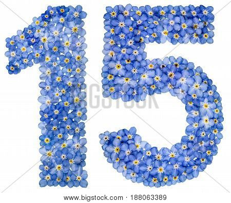 Arabic Numeral 15, Fifteen, From Blue Forget-me-not Flowers