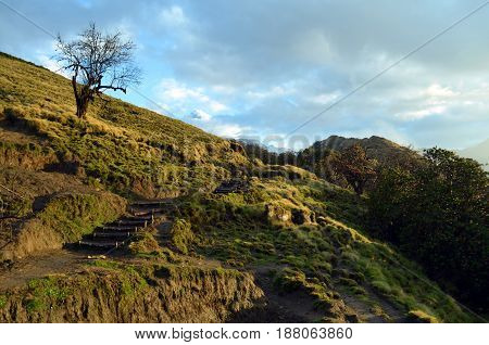 Mountain road way track in valley and snow peak. Morning, spring. Nepal landscape, Annapurna region, Mardi Himal track.
