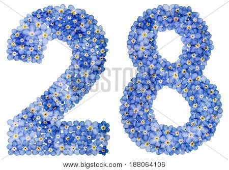 Arabic Numeral 28, Twenty Eight, From Blue Forget-me-not Flowers