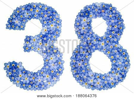 Arabic Numeral 38, Thirty Eight, From Blue Forget-me-not Flowers