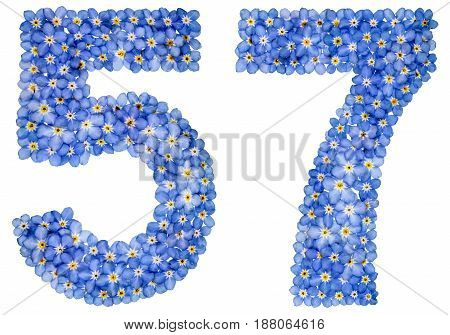 Arabic Numeral 57, Fifty Seven, From Blue Forget-me-not Flowers