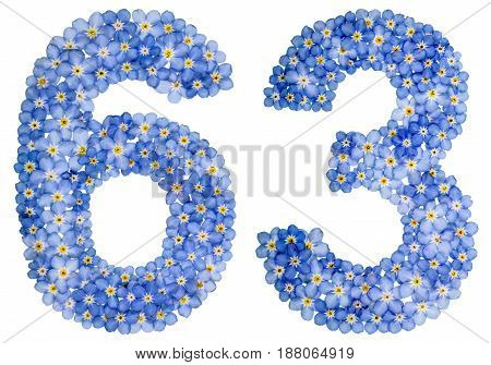 Arabic Numeral 63, Sixty Three, From Blue Forget-me-not Flowers