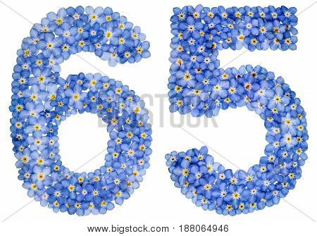 Arabic Numeral 65, Sixty Five, From Blue Forget-me-not Flowers