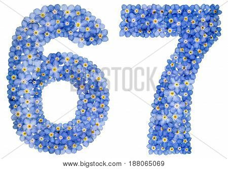 Arabic Numeral 67, Sixty Seven, From Blue Forget-me-not Flowers