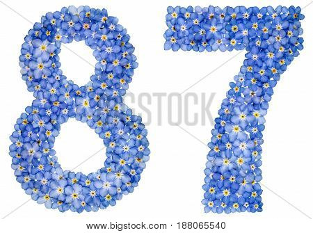 Arabic Numeral 87, Eighty Seven, From Blue Forget-me-not Flowers