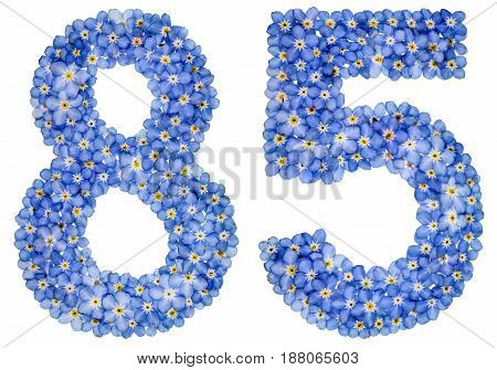 Arabic Numeral 85, Eighty Five, From Blue Forget-me-not Flowers