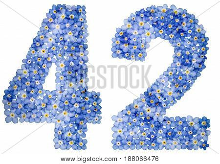 Arabic Numeral 42, Forty Two, From Blue Forget-me-not Flowers
