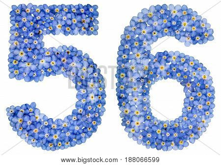 Arabic Numeral 56, Fifty Six, From Blue Forget-me-not Flowers