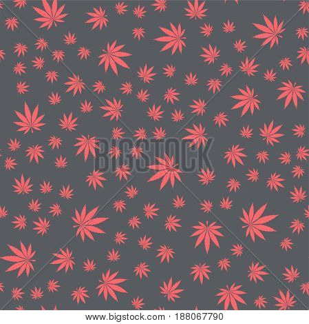 Seamless texture of medical marijuana leaf on a black background. It can be used on the packaging, textiles, and as a background.
