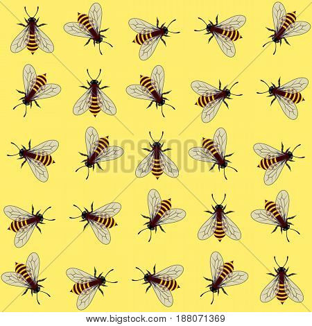 Seamless pattern. Vector illustration of bee on yellow background