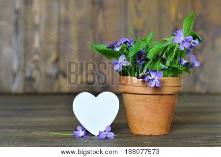 Happy Anniversary card with heart and violets in clay pot