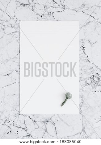 Blank sheet of paper with brunia flower on marble. Template of poster for lettering and design. Mockup