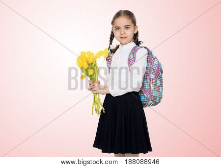 Beautiful little blond schoolgirl, with long neatly braided pigtails. In a white blouse and a long dark skirt.She is holding a bouquet of yellow tulips.Pale pink gradient background.