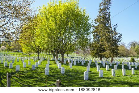 Visiting the Arlington Cemetery in Washington - WASHINGTON - DISTRICT OF COLUMBIA