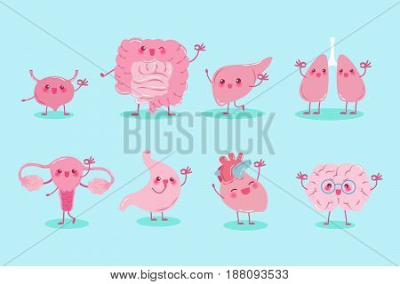 cute cartoon different organ show ok to you
