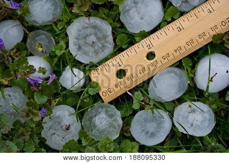 Hailstones from Severe Summer Storm - Ruler for Scale