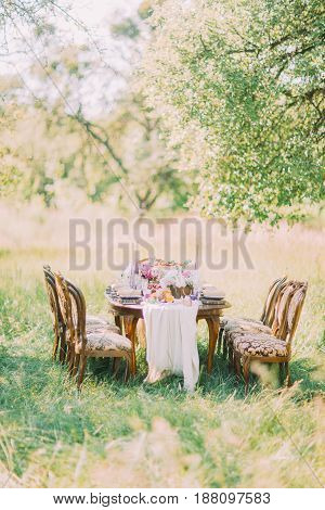 The beautiful view of the wedding table setting places in the green sunny field. The old-fashion chairs