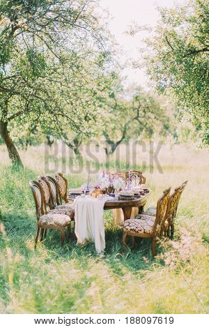 The composition of the table layout placed in the green field and the table is surrounded by the modern chairs.