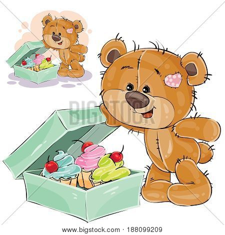 Vector illustration of a brown teddy bear sweet tooth opened a box of cakes. Print, template, design element
