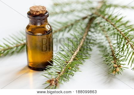 Bottles of natural essential oil and fir branches for aromatherapy and spa on white table background
