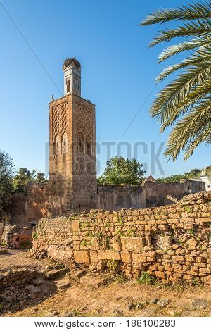 Minaret in ancient Chellah (Sala Colonia) in Rabat - Morocco