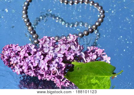 Beautiful lilacs  and pearls reflected in water