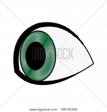 cartoon cute eye people looking icon vector illustration