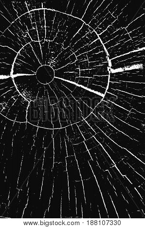 Texture with circular cracks. Vintage black and white texture of wood glass overlay.