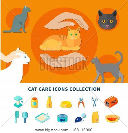 Pet care accessories for cats icons collection flat isolated vector illustration