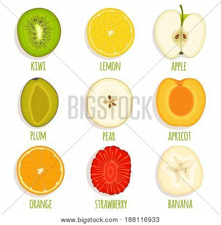 Set of sliced fruit. Vector icon collection of fruit cut in half slide circle cross section.