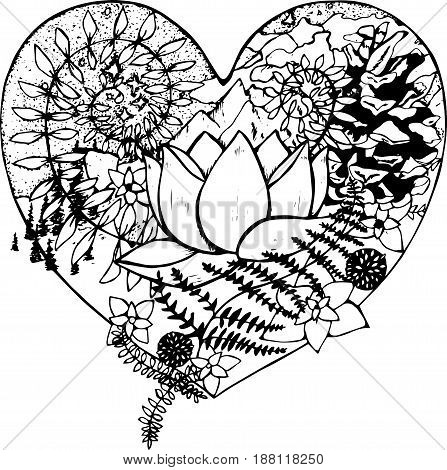 Black and white drawing of the heart, in which the lotus, fern, cone, mountains, clouds, trees.