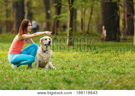 Girl gives command to dog in park on lawn against background of trees