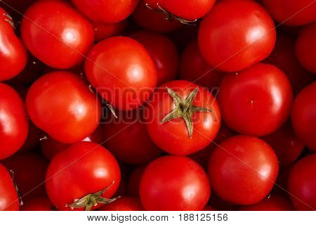Many red fresh ripe tomatoes are in the pan