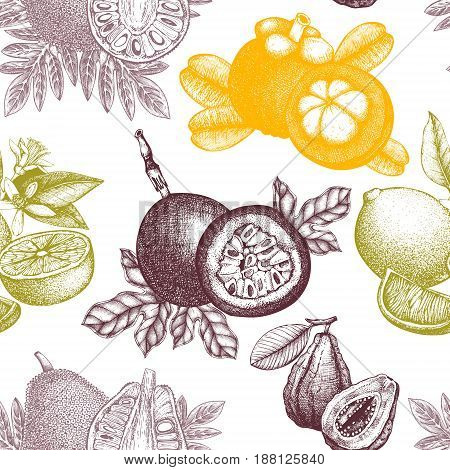 Vector background with hand drawn Tropical fruits illustrations. Engraved botanical sketch. Vintage exotic plants. Seamless pattern