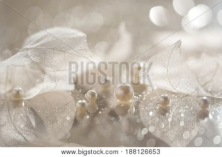 Transparent leaves and pearls. Artistic composition of a skeleton of leaves and pearls.